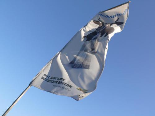 Fahne Stallvisite